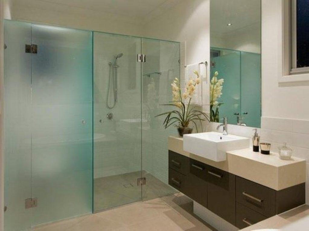 shower glass cleaner
